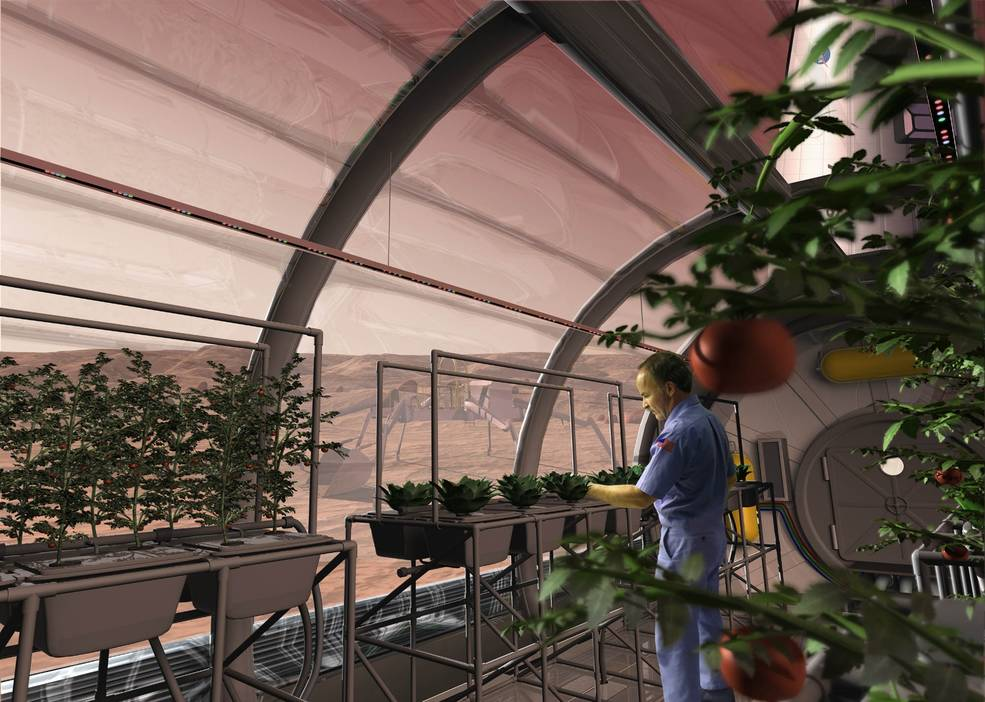 Hydroponics In Space