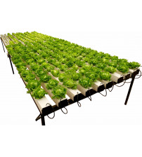 Pro Ponic Grower NFT System ( 290 Plant Kit )