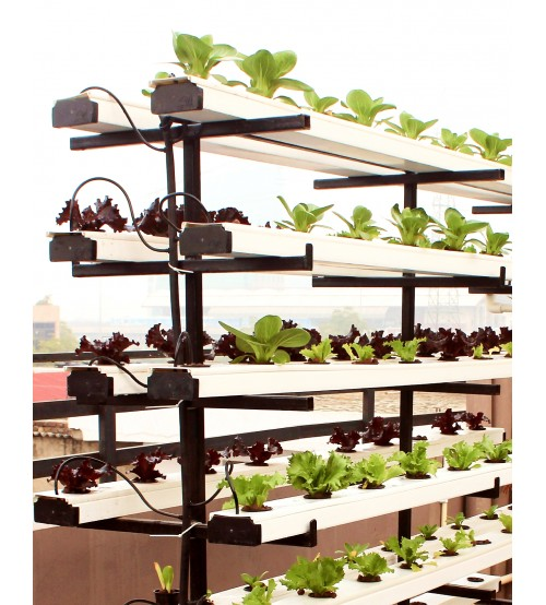 Vertical Zig Zag Hydroponic System