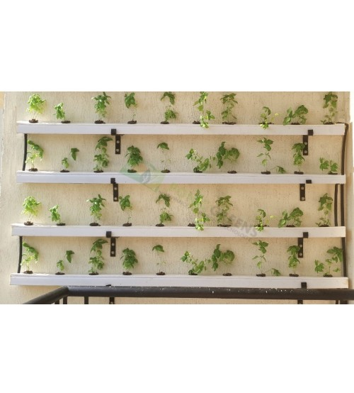 Vegetable Wall Garden ( 40 Plant System )