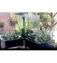 Ponic Aquarium
